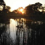 Wuparo Conservancy. Photo: NACSO/WWF