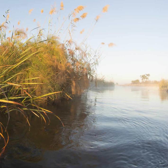 Mashi Conservancy. Photo: NACSO/WWF
